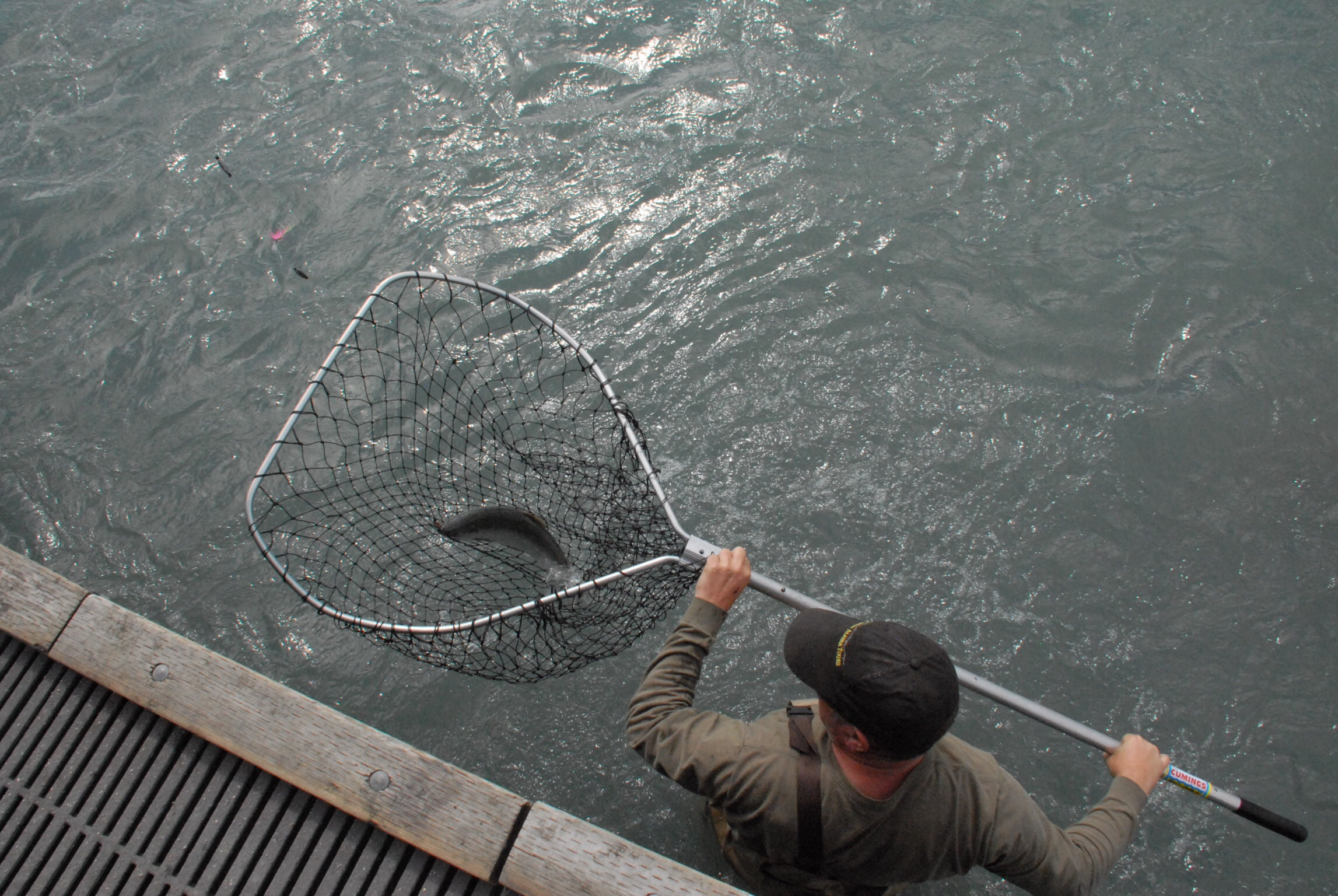 Red salmon run on the kenai river claire pridgeon for Dip nets for fishing