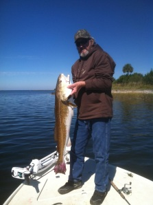 Forty inch redfish