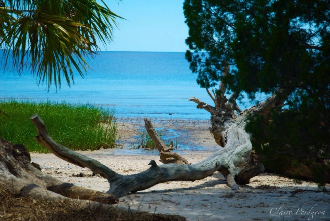 Unspoiled Florida